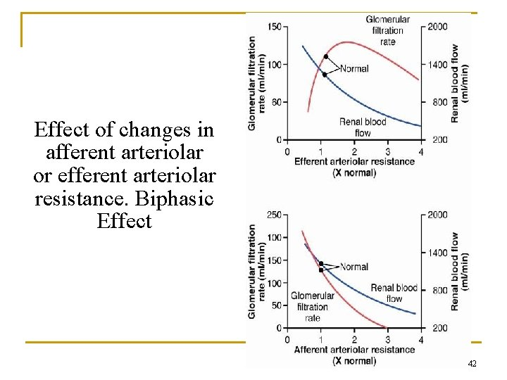Effect of changes in afferent arteriolar or efferent arteriolar resistance. Biphasic Effect 42