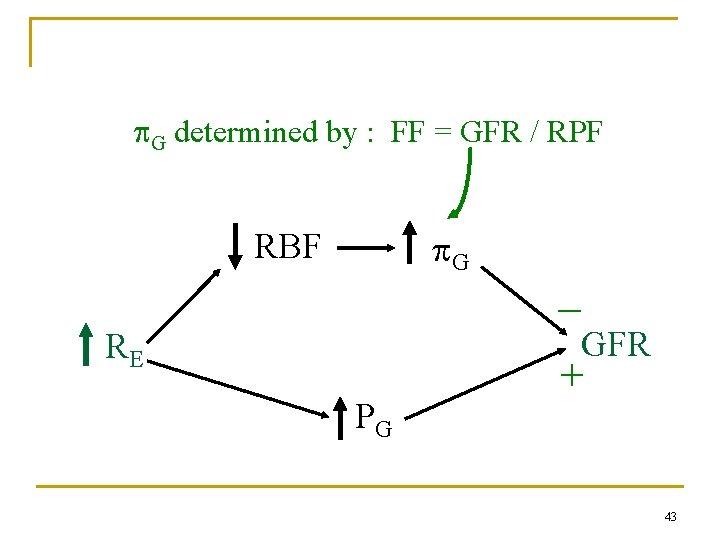 G determined by : FF = GFR / RPF G RBF _ GFR