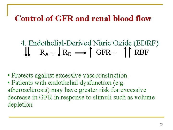 Control of GFR and renal blood flow 4. Endothelial-Derived Nitric Oxide (EDRF) RA +