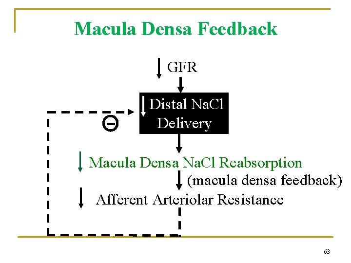 Macula Densa Feedback GFR Distal Na. Cl Delivery Macula Densa Na. Cl Reabsorption (macula