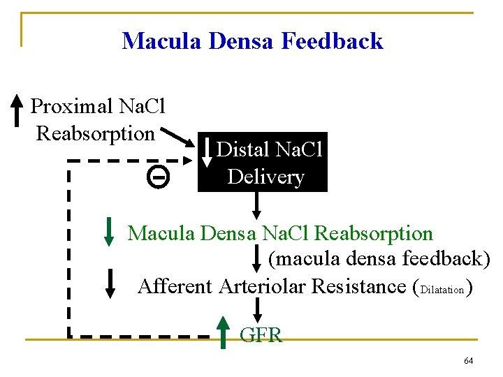 Macula Densa Feedback Proximal Na. Cl Reabsorption Distal Na. Cl Delivery Macula Densa Na.