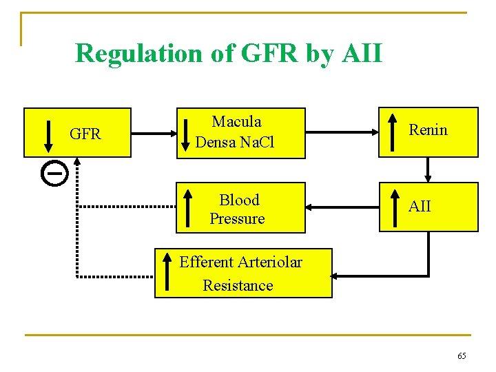 Regulation of GFR by AII GFR Macula Densa Na. Cl Blood Pressure Renin AII