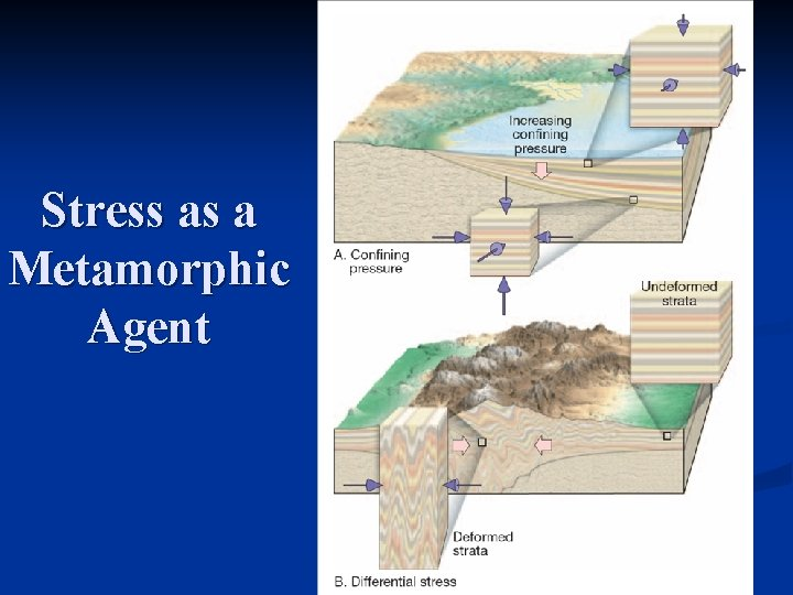 Stress as a Metamorphic Agent
