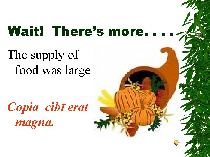 Wait! There's more. . The supply of food was large. Copia cibī erat magna.