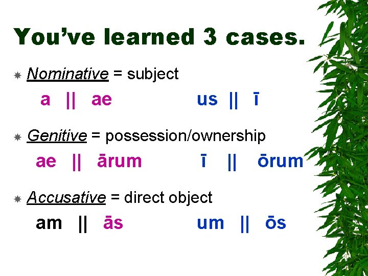 You've learned 3 cases. Nominative = subject a    ae Genitive = possession/ownership ae