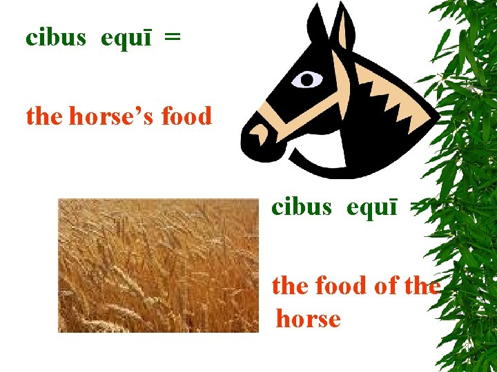 cibus equī = the horse's food cibus equī = the food of the horse