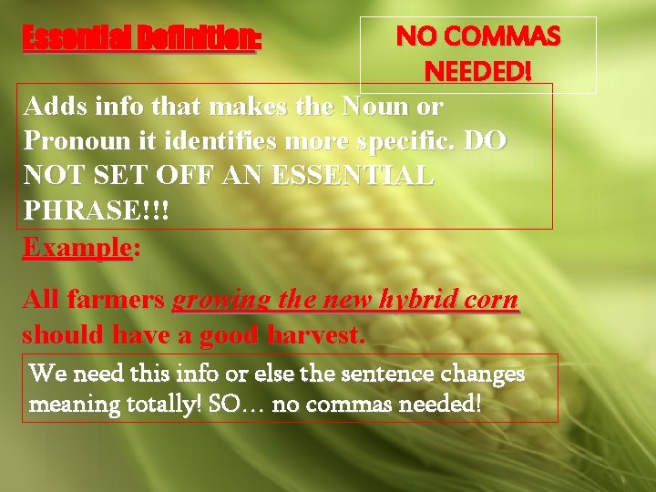 Essential Definition: NO COMMAS NEEDED! Adds info that makes the Noun or Pronoun it