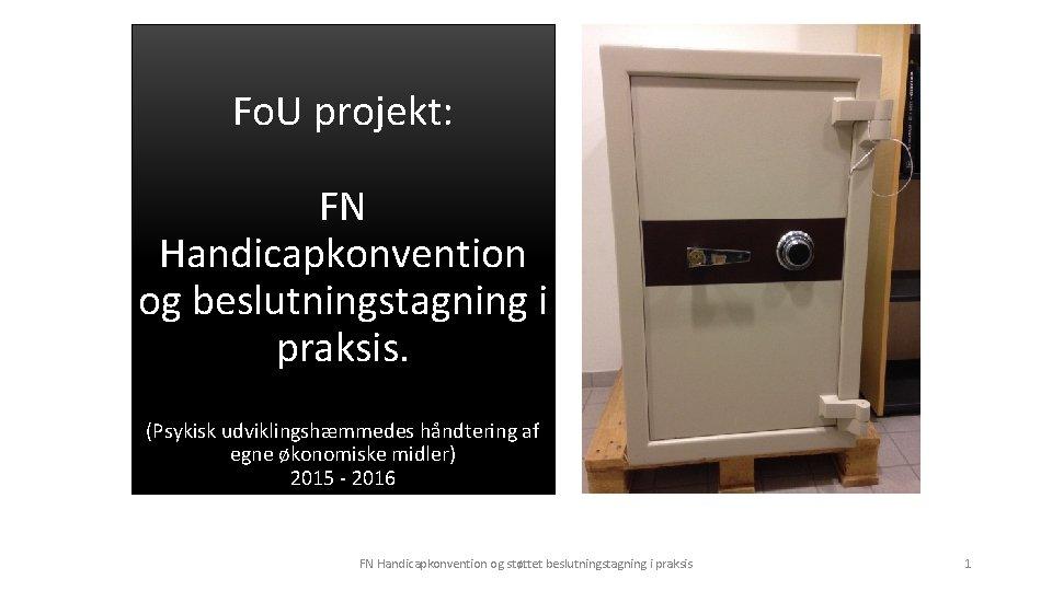 Fo. U projekt: FN Handicapkonvention og beslutningstagning i praksis. (Psykisk udviklingshæmmedes håndtering af egne