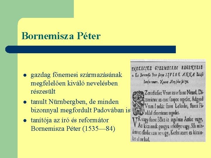 Bornemisza Péter l l l gazdag főnemesi származásának megfelelően kiváló nevelésben részesült tanult Nürnbergben,