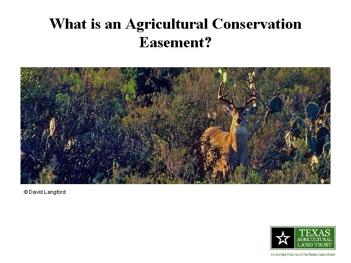 What is an Agricultural Conservation Easement? © David Langford