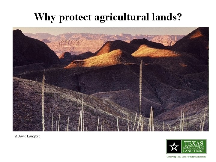 Why protect agricultural lands? © David Langford