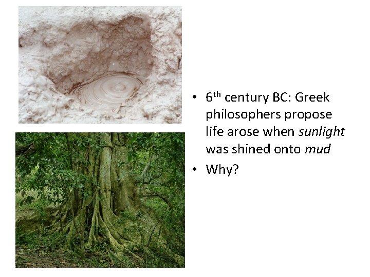• 6 th century BC: Greek philosophers propose life arose when sunlight was