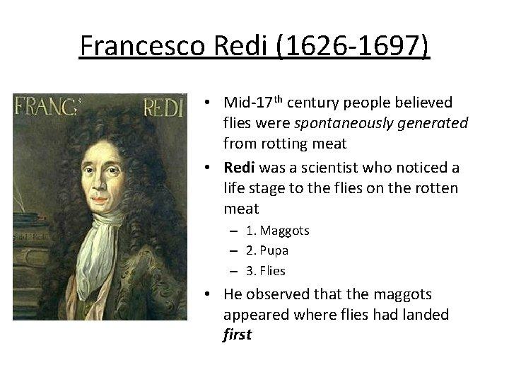 Francesco Redi (1626 -1697) • Mid-17 th century people believed flies were spontaneously generated