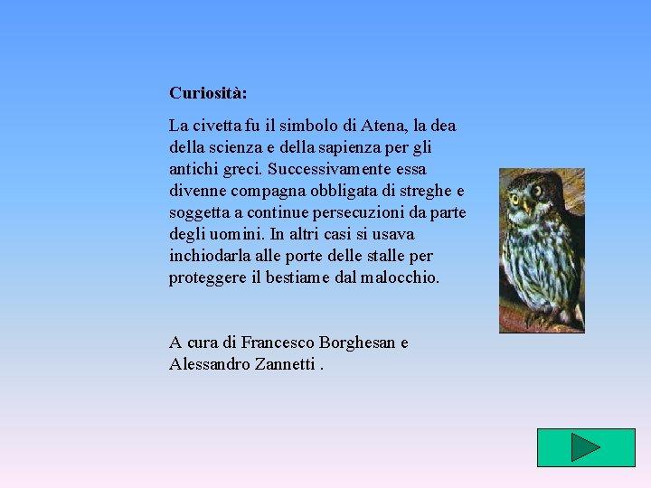Curiosità: La civetta fu il simbolo di Atena, la dea della scienza e della