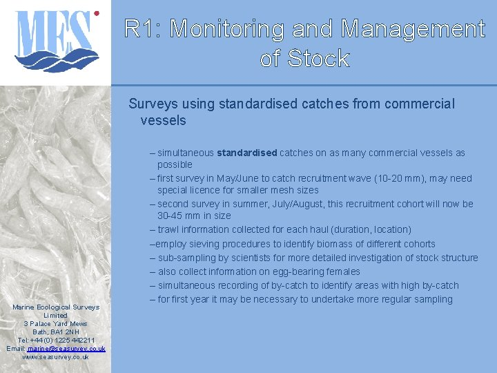 R 1: Monitoring and Management of Stock Surveys using standardised catches from commercial vessels