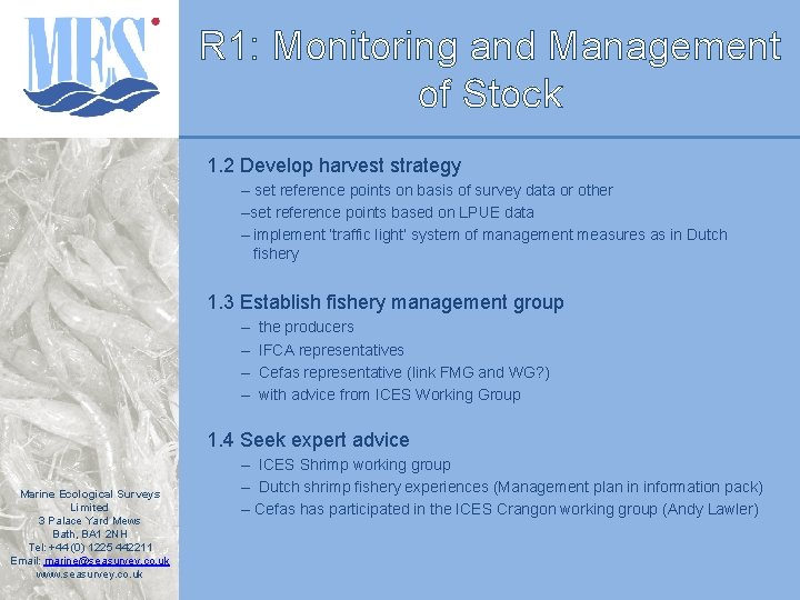 R 1: Monitoring and Management of Stock 1. 2 Develop harvest strategy – set