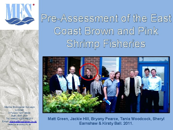 Pre-Assessment of the East Coast Brown and Pink Shrimp Fisheries Marine Ecological Surveys Limited