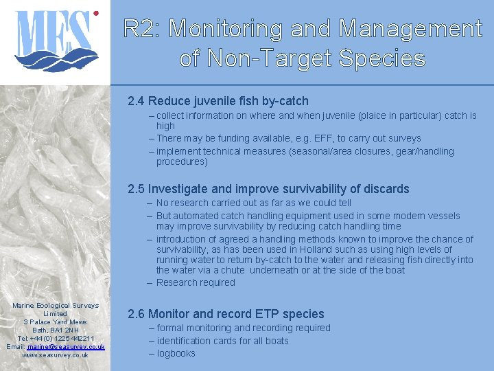 R 2: Monitoring and Management of Non-Target Species 2. 4 Reduce juvenile fish by-catch