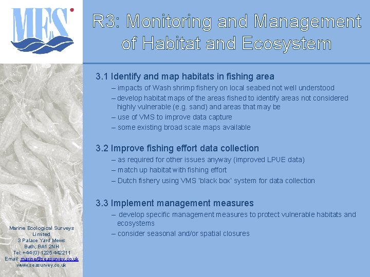 R 3: Monitoring and Management of Habitat and Ecosystem 3. 1 Identify and map