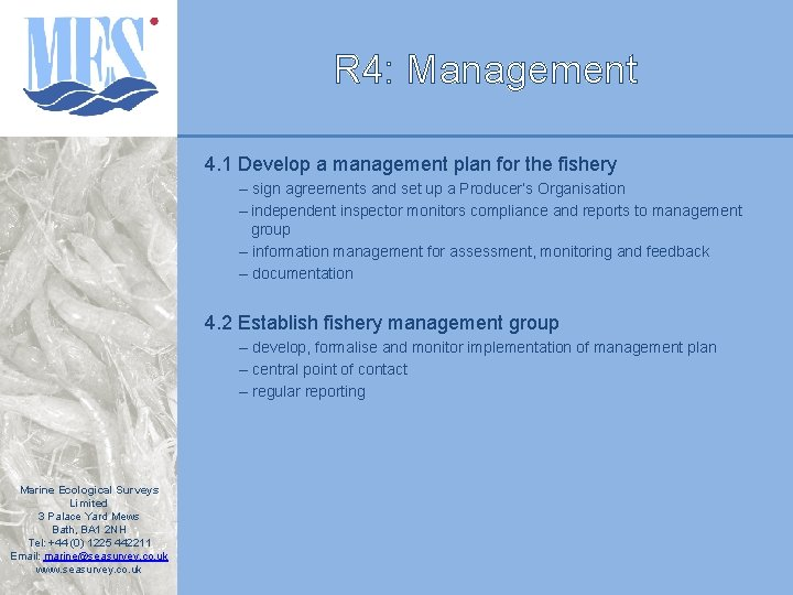 R 4: Management 4. 1 Develop a management plan for the fishery – sign