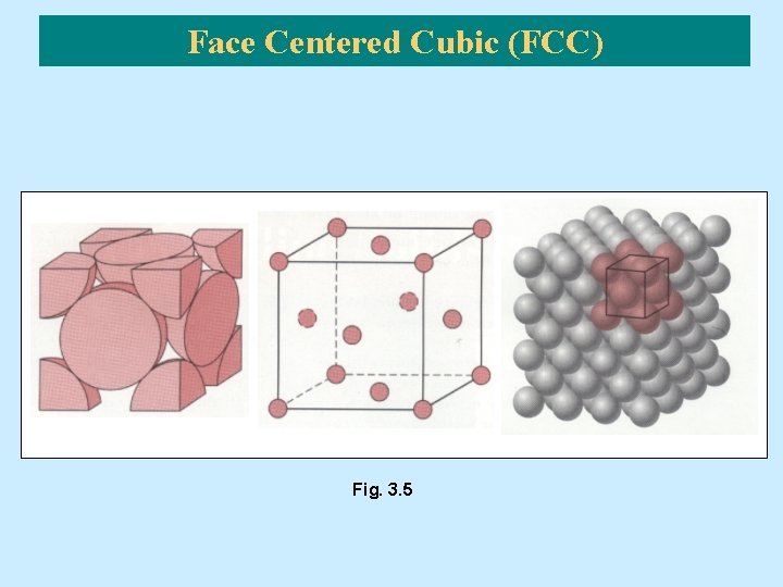 Face Centered Cubic (FCC) Fig. 3. 5