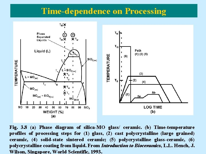 Time-dependence on Processing Fig. 3. 8 (a) Phase diagram of silica-MO glass/ ceramic. (b)