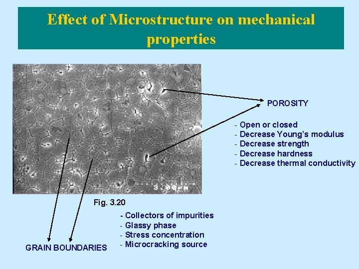 Effect of Microstructure on mechanical properties POROSITY - Open or closed - Decrease Young's