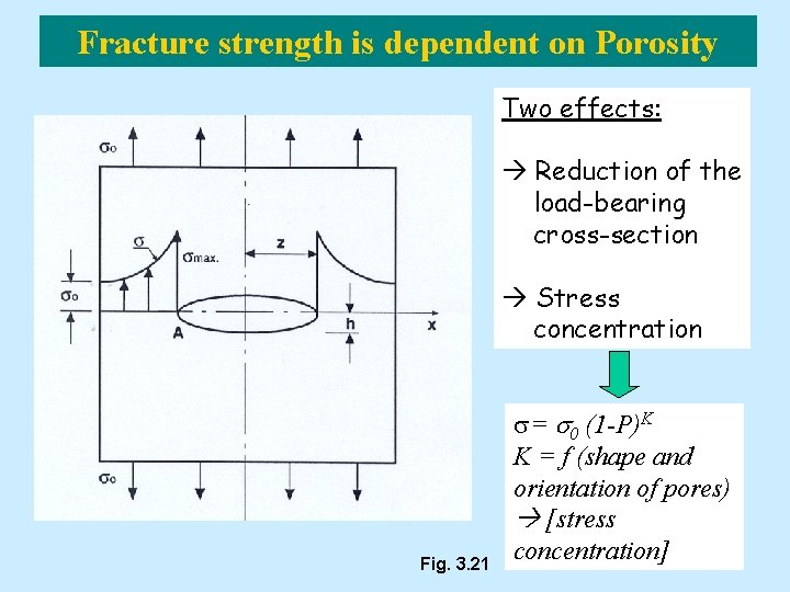Fracture strength is dependent on Porosity Two effects: Reduction of the load-bearing cross-section Stress