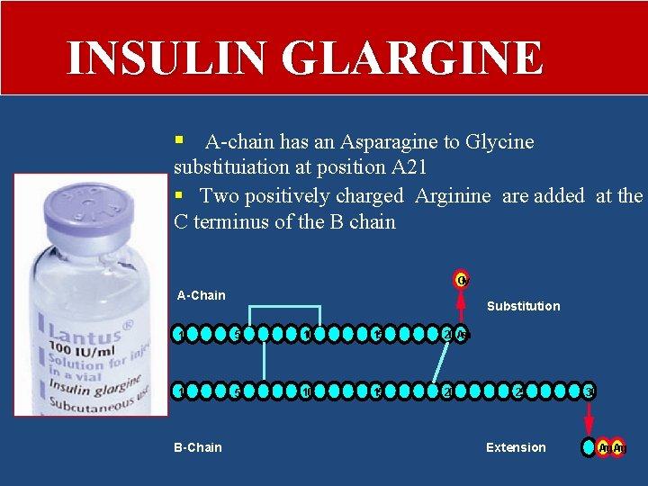 INSULIN GLARGINE § A-chain has an Asparagine to Glycine substituiation at position A 21