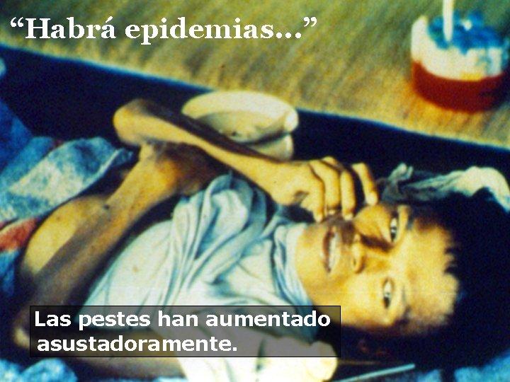 """""""Habrá epidemias. . . """" Las pestes han aumentado asustadoramente."""