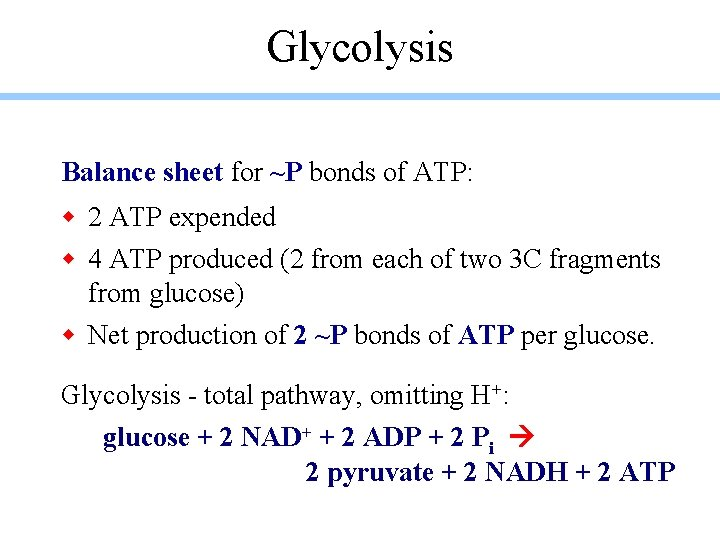 Glycolysis Balance sheet for ~P bonds of ATP: w 2 ATP expended w 4