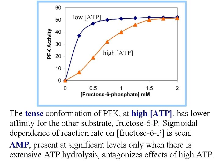 The tense conformation of PFK, at high [ATP], has lower affinity for the other