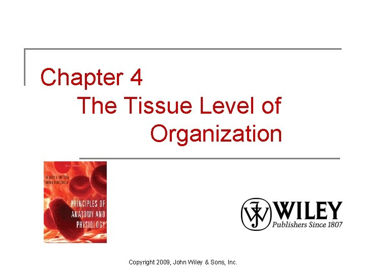 Chapter 4 The Tissue Level of Organization Copyright 2009, John Wiley & Sons, Inc.