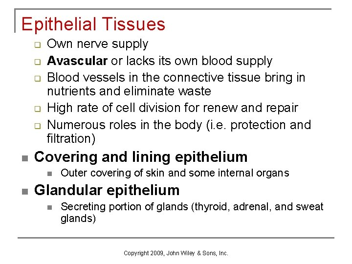 Epithelial Tissues q q q n Own nerve supply Avascular or lacks its own