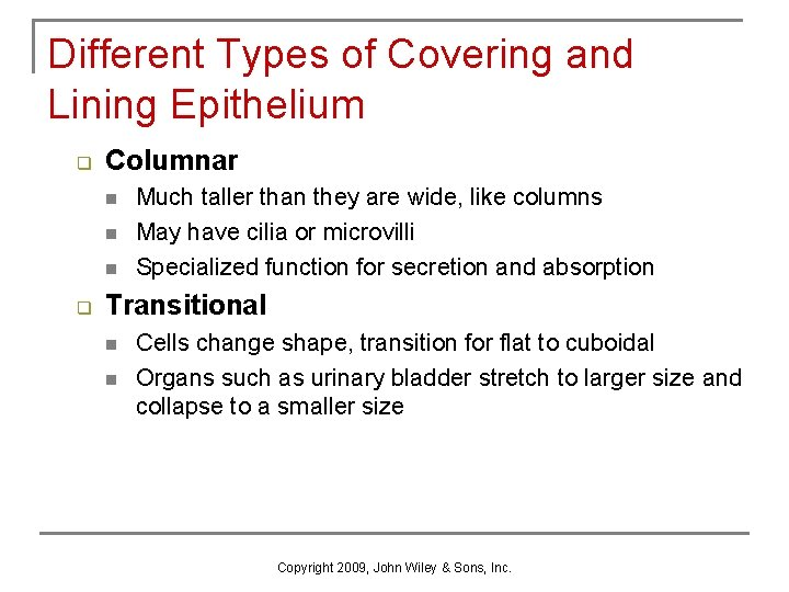 Different Types of Covering and Lining Epithelium q Columnar n n n q Much