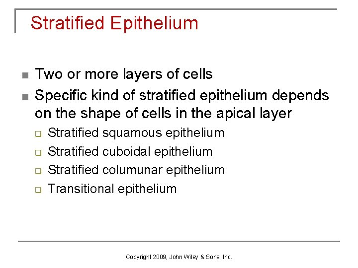 Stratified Epithelium n n Two or more layers of cells Specific kind of stratified