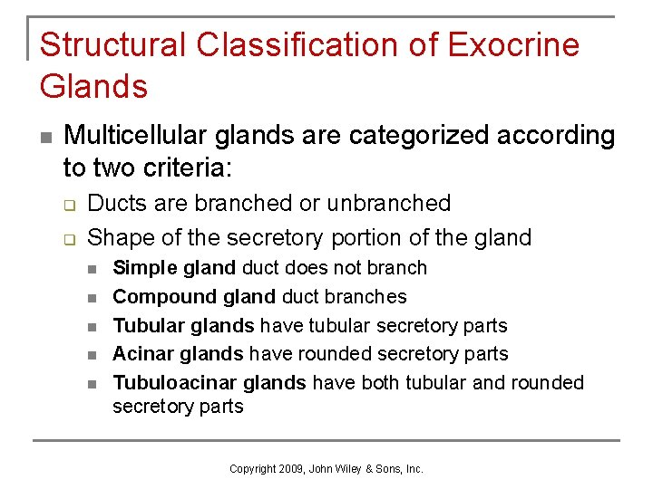 Structural Classification of Exocrine Glands n Multicellular glands are categorized according to two criteria: