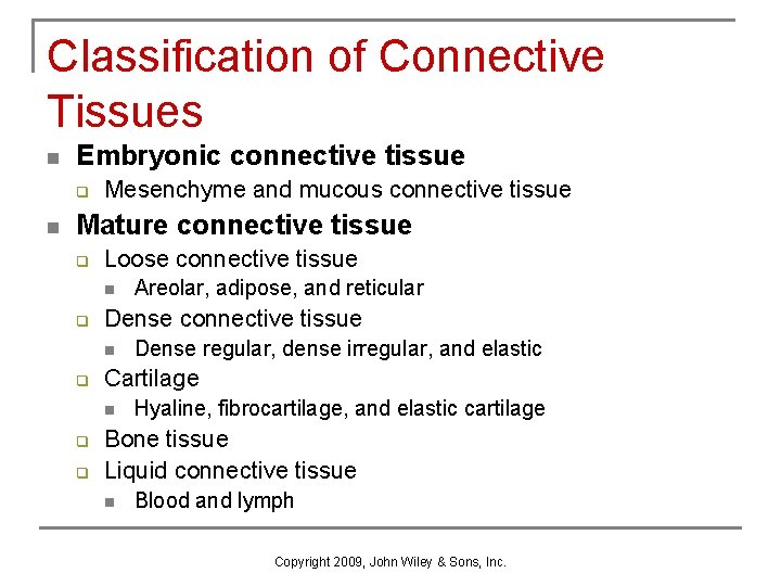 Classification of Connective Tissues n Embryonic connective tissue q n Mesenchyme and mucous connective