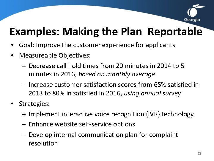 Examples: Making the Plan Reportable • Goal: Improve the customer experience for applicants •