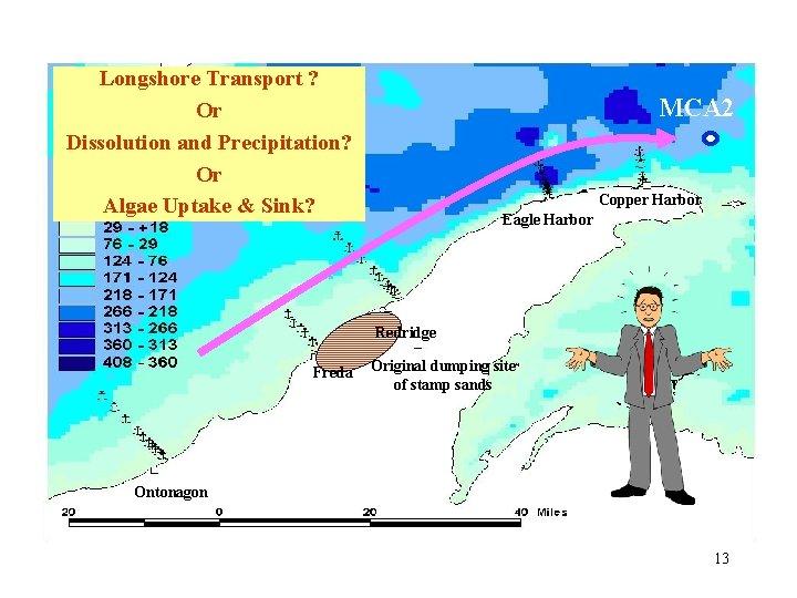 Longshore Transport ? Or Dissolution and Precipitation? Or Algae Uptake & Sink? MCA 2