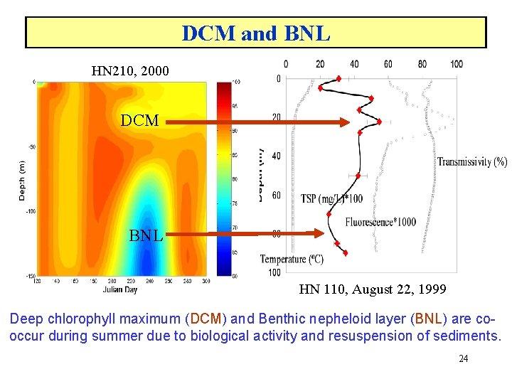 DCM and BNL HN 210, 2000 DCM BNL HN 110, August 22, 1999 Deep