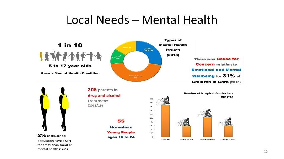 Local Needs – Mental Health 12
