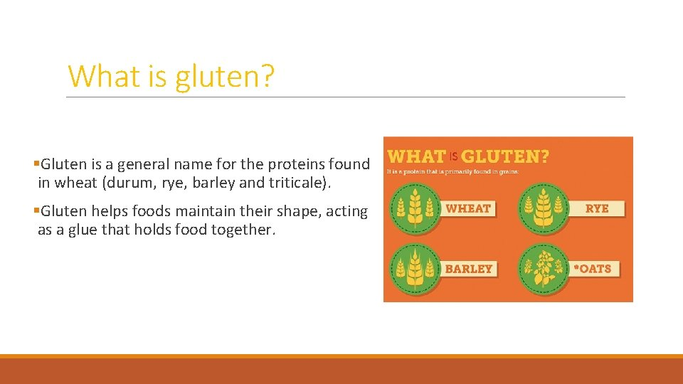 What is gluten? §Gluten is a general name for the proteins found in wheat