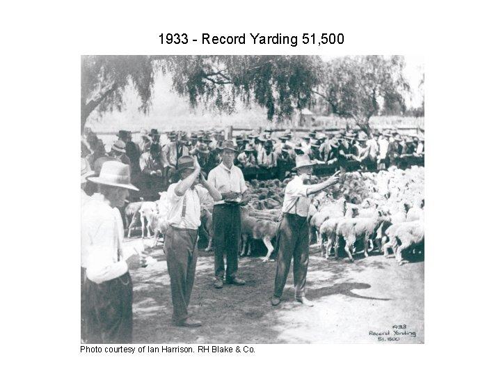 1933 - Record Yarding 51, 500 Photo courtesy of Ian Harrison. RH Blake &
