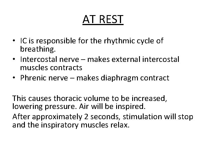 AT REST • IC is responsible for the rhythmic cycle of breathing. • Intercostal
