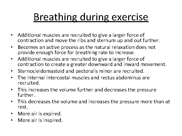 Breathing during exercise • Additional muscles are recruited to give a larger force of