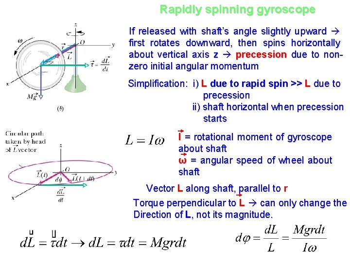 Rapidly spinning gyroscope If released with shaft's angle slightly upward first rotates downward, then