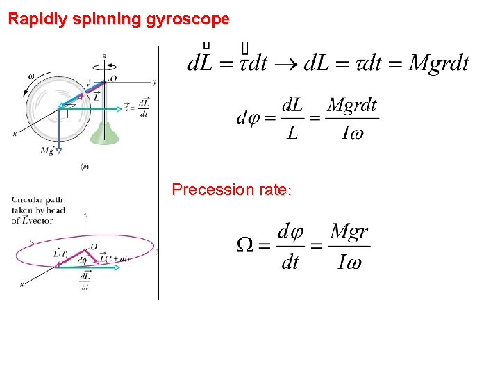 Rapidly spinning gyroscope Precession rate: