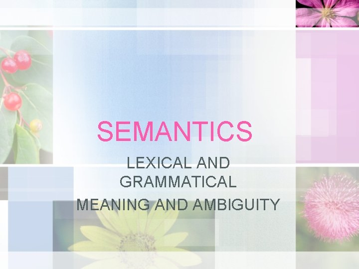 SEMANTICS LEXICAL AND GRAMMATICAL MEANING AND AMBIGUITY