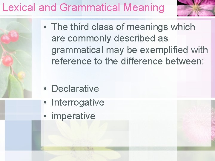 Lexical and Grammatical Meaning • The third class of meanings which are commonly described